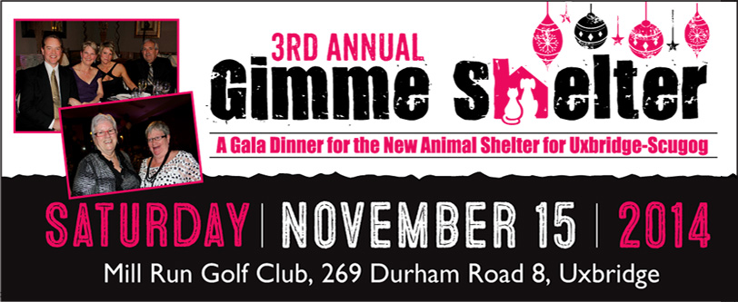 3rd Annual Gimme Shelter Event